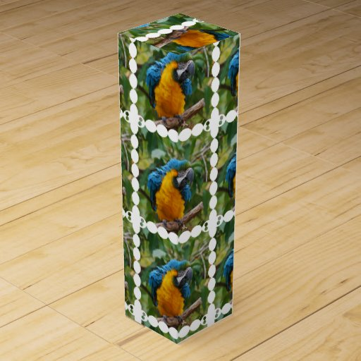 Fluffy Blue and Gold Macaw Wine Gift Box