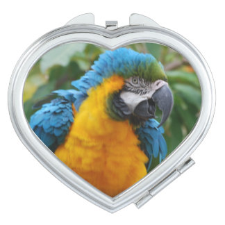 Fluffy Blue and Gold Macaw Vanity Mirror