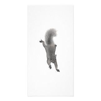 Fluffy Digitally Drawn Grey Squirrel Climbing Down Customized Photo Card