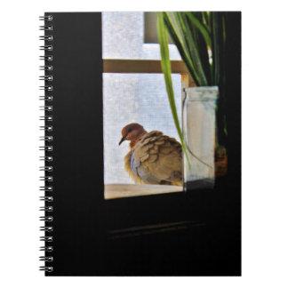 Fluffy Dove Notebooks