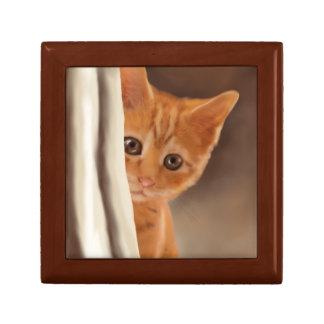 Fluffy Ginger Kitten Gift Box