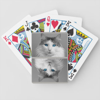 Fluffy Gray and White Cat with Crazy Blue Eyes Bicycle Playing Cards
