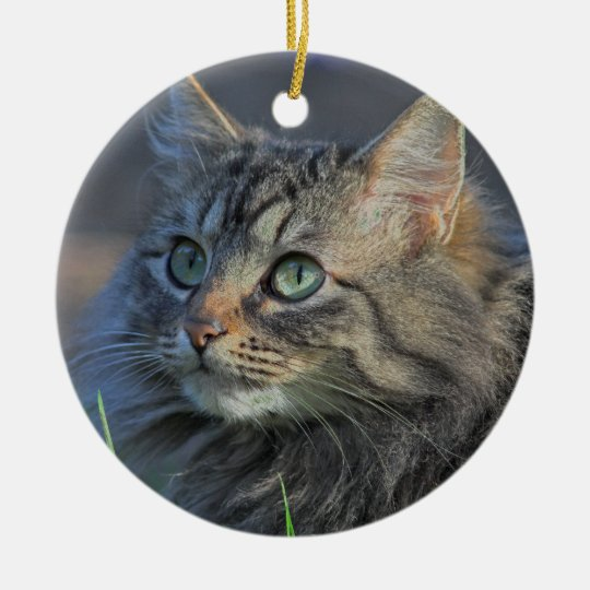 Fluffy Grey Tabby Cat Looking Upward Christmas Ornament
