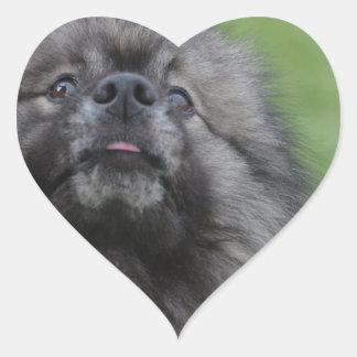 Fluffy Keeshond Heart Sticker
