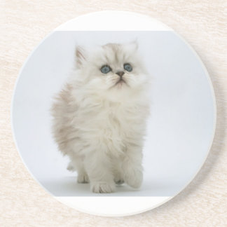 Fluffy Kitten Coaster