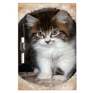 Fluffy Kitten Dry Erase White Board