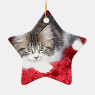 fluffy-kitten-on-red-rug ceramic star decoration