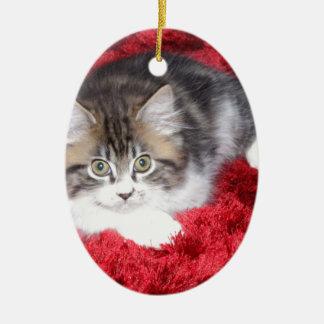 fluffy-kitten-on-red-rug christmas ornament