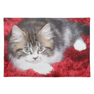 fluffy-kitten-on-red-rug placemat