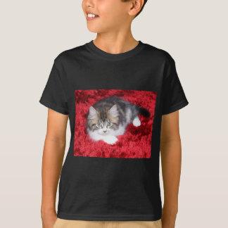 fluffy-kitten-on-red-rug T-Shirt