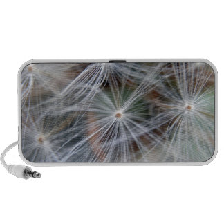 Fluffy (Parachute) Dandelion Seeds Portable Speakers