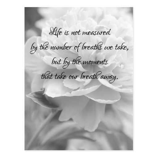 Fluffy Peony Life Quote Postcard