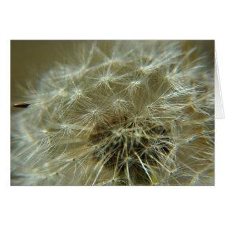 Fluffy Sphere - Card