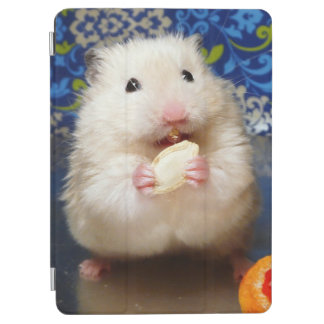 Fluffy syrian hamster Kokolinka eating a seed iPad Air Cover