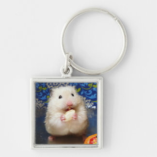 Fluffy syrian hamster Kokolinka eating a seed Silver-Colored Square Key Ring