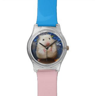 Fluffy syrian hamster Kokolinka eating a seed Watch