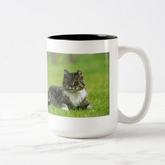 """""""Fluffy"""" Tabby-Cat Mug"""