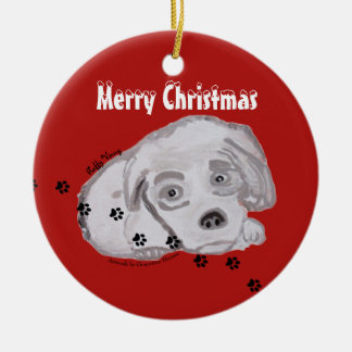 Fluffy Vinny & Soft Kitty Ornament