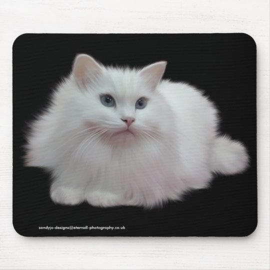Fluffy White Cat Mouse Pad