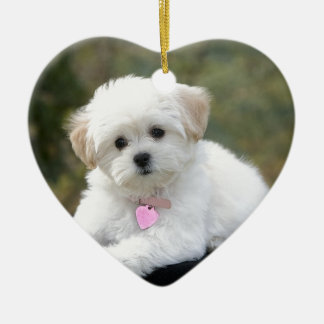 Fluffy White Dog Christmas Ornament
