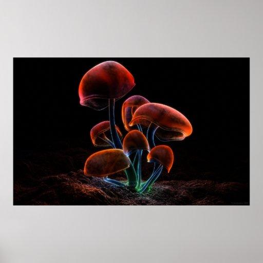Fluorescence (2009) poster