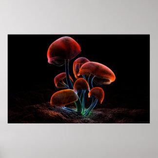 Fluorescence 2009 print