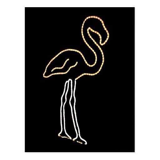 Fluorescent Flamingo Post Card
