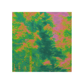 fluorescent forest wood canvases