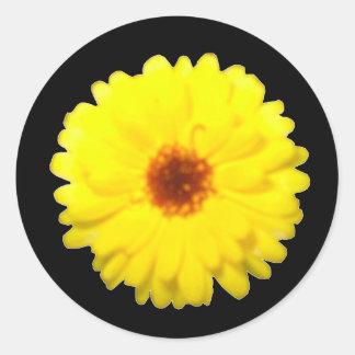 Fluorescent Marigold Sticker