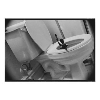 Flush Down the Toilet Poster