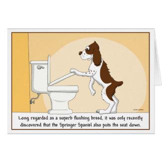 Flushing Springer Spaniel card