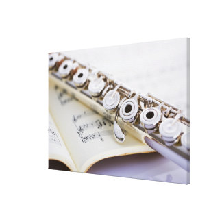 Flute 2 stretched canvas print