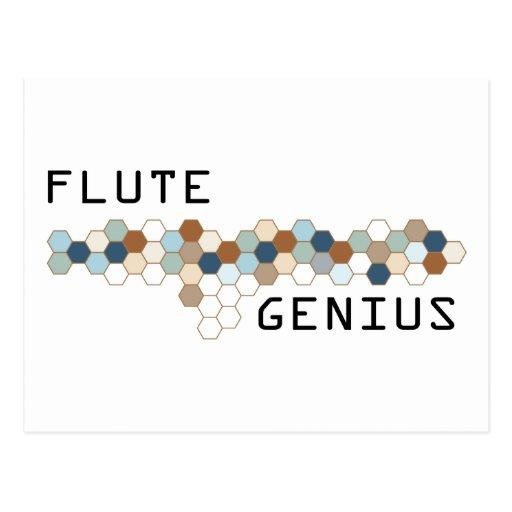 Flute Genius Postcard