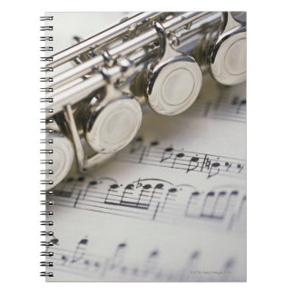 Flute on Sheet Music Spiral Note Books