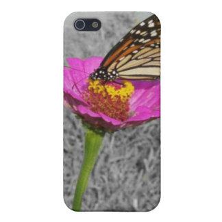 Flutterby Butterfly iPhone 5/5S Case