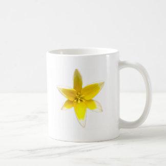 flwrs 030 mug