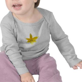flwrs 030 t-shirt
