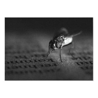 Fly 1 13 cm x 18 cm invitation card
