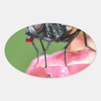 fly-396223.jpg oval sticker