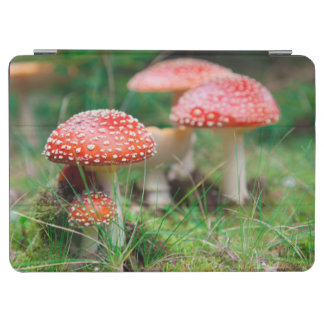 Fly-Agaric In A Forest, Closeup Photo iPad Air Cover