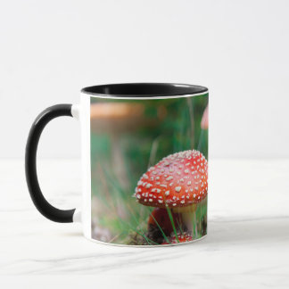 Fly-Agaric In A Forest, Closeup Photo Mug