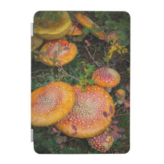 Fly agaric mushrooms at Mowich Lake iPad Mini Cover