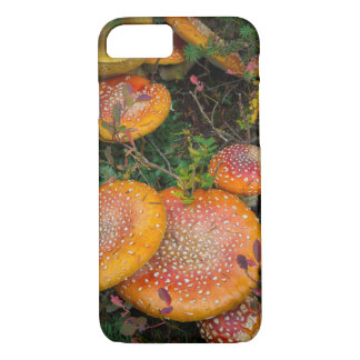 Fly agaric mushrooms at Mowich Lake iPhone 8/7 Case