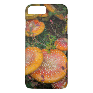 Fly agaric mushrooms at Mowich Lake iPhone 8 Plus/7 Plus Case