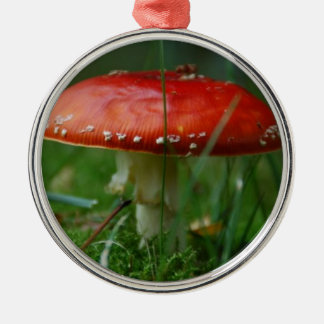 Fly agaric Silver-Colored round decoration