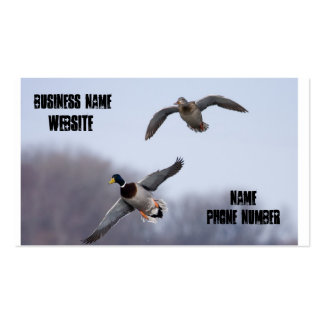 Fly Ducks Pack Of Standard Business Cards