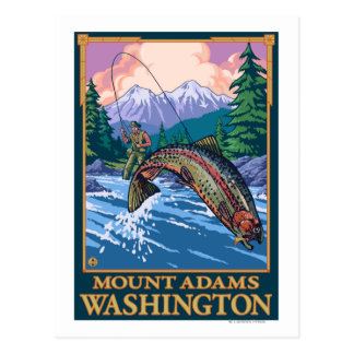 Fly Fishing Scene - Mount Adams, Washington Postcard