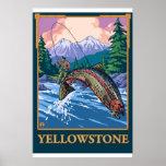Fly Fishing Scene - Yellowstone National Park