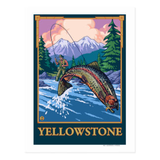 Fly Fishing Scene - Yellowstone National Park Postcard