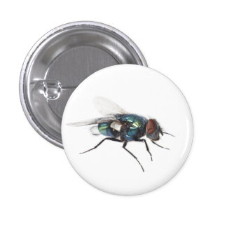 Fly insect 3 cm round badge